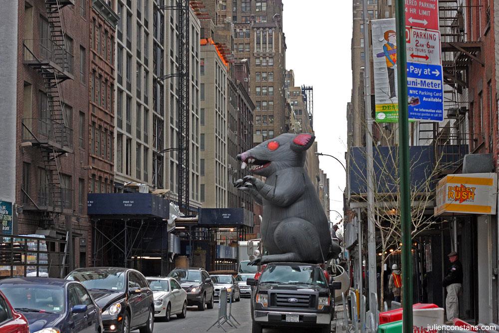 NYC Oddity